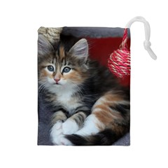 Comfy Kitty Drawstring Pouches (large)  by trendistuff
