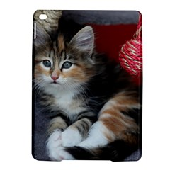 COMFY KITTY iPad Air 2 Hardshell Cases by trendistuff