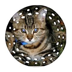 Blue Eyed Kitty Round Filigree Ornament (2side) by trendistuff