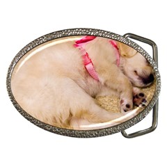 Adorable Sleeping Puppy Belt Buckles by trendistuff