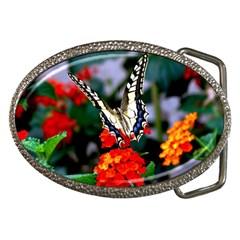 Butterfly Flowers 1 Belt Buckles by trendistuff