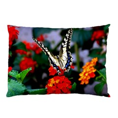 Butterfly Flowers 1 Pillow Cases by trendistuff