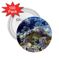 Sea Turtle 2 25  Buttons (100 Pack)  by trendistuff