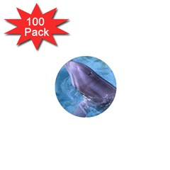 Dolphin 2 1  Mini Magnets (100 Pack)  by trendistuff