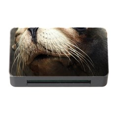 Cute Sea Lion Memory Card Reader With Cf by trendistuff