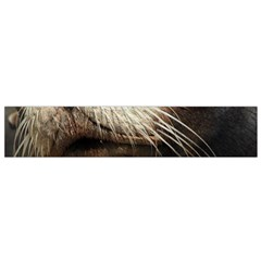 CUTE SEA LION Flano Scarf (Small)  by trendistuff