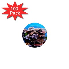 Coral Outcrop 2 1  Mini Magnets (100 Pack)  by trendistuff