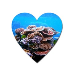 CORAL OUTCROP 2 Heart Magnet by trendistuff