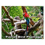 Parrot Bird Plumage  Puzzle - Jigsaw Puzzle (Rectangular)