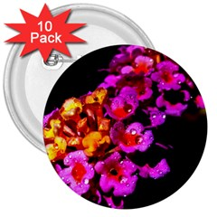 Lantanas 3  Buttons (10 Pack)  by timelessartoncanvas