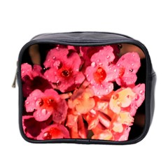 Dsc 0117666565 Mini Toiletries Bag 2 Side by timelessartoncanvas