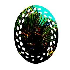 Dsc 01677787 Ornament (oval Filigree)  by timelessartoncanvas
