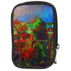 Chicago Park Painting Compact Camera Cases by bloomingvinedesign