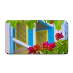 Colored Flowers In Front Ot Windows House Print Medium Bar Mats by dflcprints