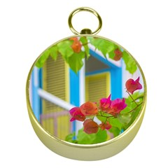 Colored Flowers In Front Ot Windows House Print Gold Compasses by dflcprints