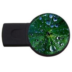 Morning Dew Usb Flash Drive Round (2 Gb)  by Costasonlineshop