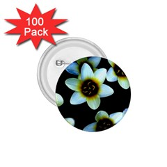 Light Blue Flowers On A Black Background 1 75  Buttons (100 Pack)  by Costasonlineshop