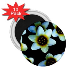 Light Blue Flowers On A Black Background 2.25  Magnets (10 pack)  by Costasonlineshop