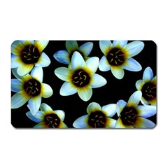 Light Blue Flowers On A Black Background Magnet (rectangular) by Costasonlineshop