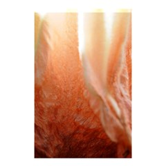 Floating Peach Shower Curtain 48  x 72  (Small)  by timelessartoncanvas