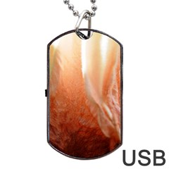 Floating Peach Dog Tag Usb Flash (two Sides)  by timelessartoncanvas