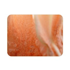 Floating Peach Double Sided Flano Blanket (mini)  by timelessartoncanvas