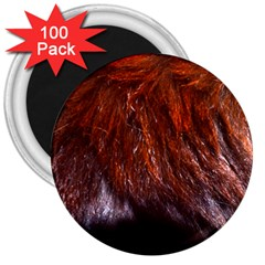 Red Hair 3  Magnets (100 pack) by timelessartoncanvas