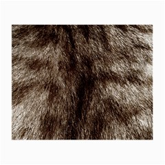 Black And White Silver Tiger Fur Small Glasses Cloth by timelessartoncanvas