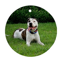 Pit Bull T Bone Round Ornament (two Sides)  by ButThePitBull