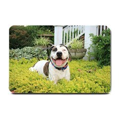 Pit Bull T Bone Small Doormat  by ButThePitBull