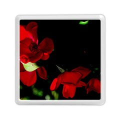 Roses 2 Memory Card Reader (square)  by timelessartoncanvas
