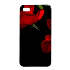 Roses 3 Apple Iphone 4/4s Seamless Case (black) by timelessartoncanvas