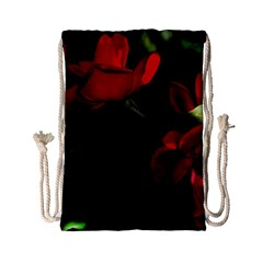Roses 3 Drawstring Bag (small) by timelessartoncanvas