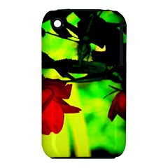 Red Roses And Bright Green 2 Apple Iphone 3g/3gs Hardshell Case (pc+silicone) by timelessartoncanvas