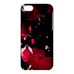 Pink Roses Apple Iphone 5c Hardshell Case by timelessartoncanvas