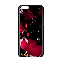 Pink Roses Apple iPhone 6/6S Black Enamel Case by timelessartoncanvas