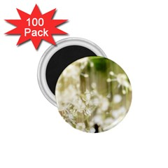 Little White Flowers 1 75  Magnets (100 Pack)  by timelessartoncanvas