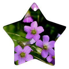 Little Purple Flowers Ornament (star)  by timelessartoncanvas