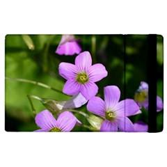Little Purple Flowers Apple Ipad 2 Flip Case by timelessartoncanvas