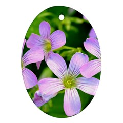 Little Purple Flowers 2 Oval Ornament (two Sides) by timelessartoncanvas