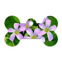 Little Purple Flowers 2 Dog Tag Bone (two Sides) by timelessartoncanvas