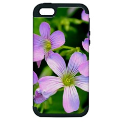Little Purple Flowers 2 Apple Iphone 5 Hardshell Case (pc+silicone) by timelessartoncanvas