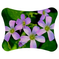 Little Purple Flowers 2 Jigsaw Puzzle Photo Stand (bow) by timelessartoncanvas