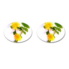 Margaritas Bighop Design Cufflinks (oval) by bighop
