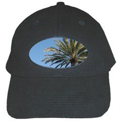 Tropical Palm Tree  Black Cap by BrightVibesDesign