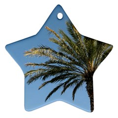 Tropical Palm Tree  Star Ornament (two Sides)  by BrightVibesDesign