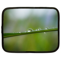 After The Rain Netbook Case (large) by LauraNATURE
