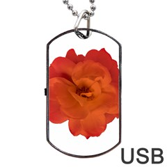 Red Rose Photo Dog Tag USB Flash (One Side) by dflcprints