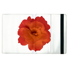 Red Rose Photo Apple Ipad 3/4 Flip Case by dflcprints