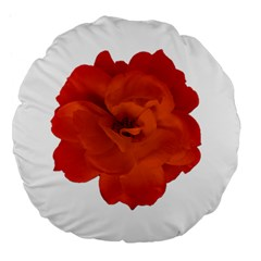 Red Rose Photo Large 18  Premium Flano Round Cushions by dflcprints